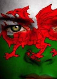 The Welsh Flag Face Painted