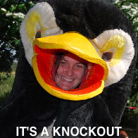 Its A Knockout Costume