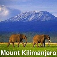 Mount Kilimanjaro with 2 Elephants