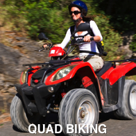 Quad Biking Hen