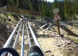 Downhill on the Forest Coaster