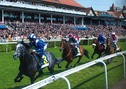 Horse Racing in Chester