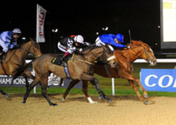 Horse Racing Night Wolverhampton