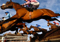 Horse Racing Newbury Guardian Paper