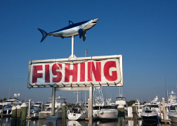 Shark Fishing Sign