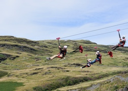 Zip Wire Titan Stag Group