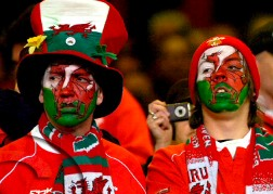 Welsh Dragon Face Paint