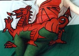 Cardiff Flag Covering A Body
