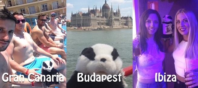 Seth the badger in Ibiza, Gran Canaria & Budapest