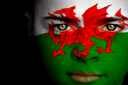 Girl with Wales Flag face paint
